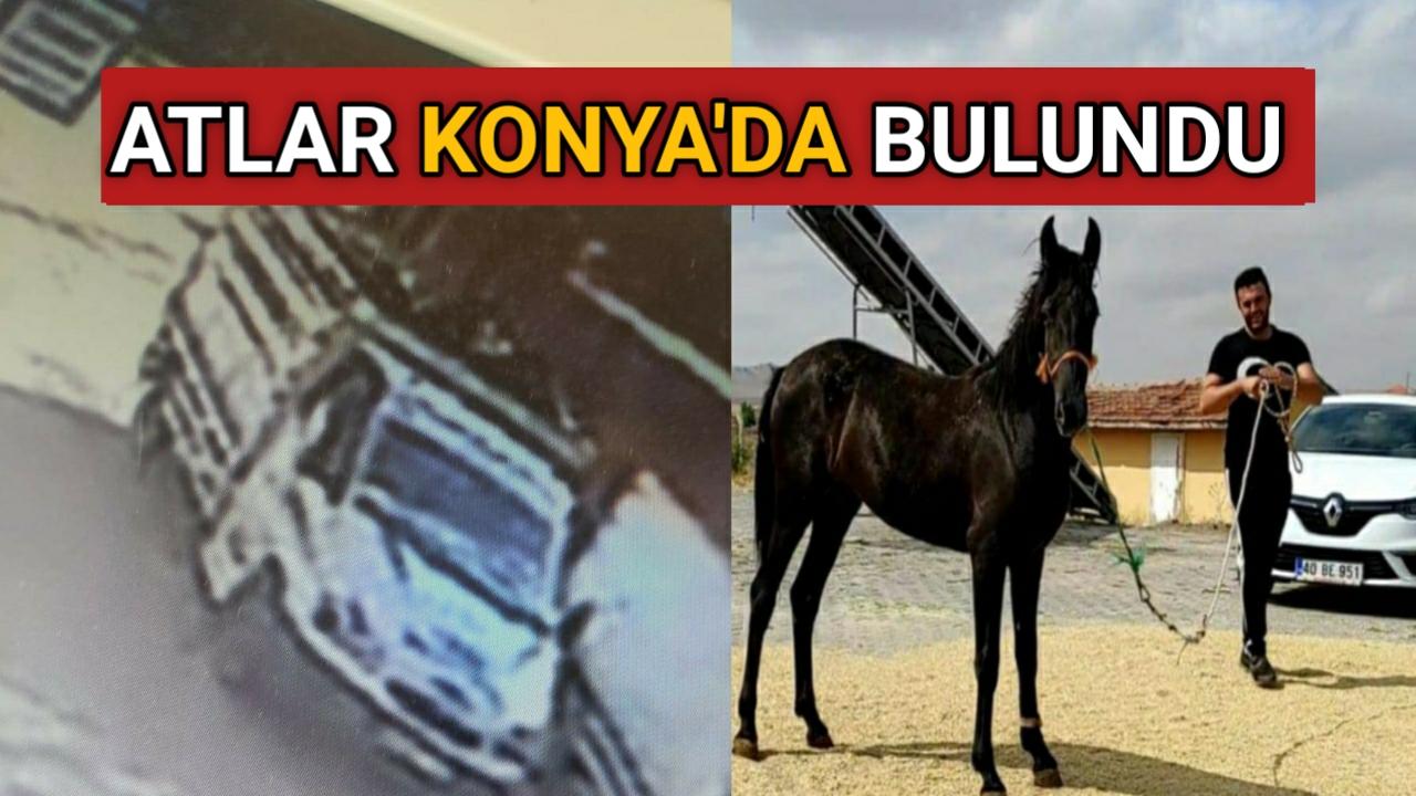 KIRŞEHİR' DE KAYBOLAN AT'LAR KONYA'DA BULUNDU